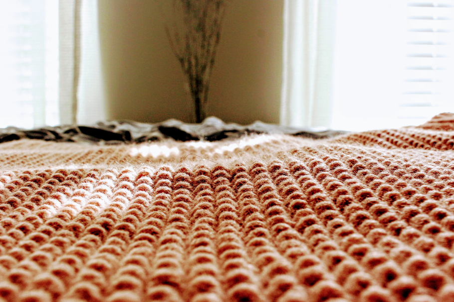 The Most Logical Choice is a Carpet Cleaning Company
